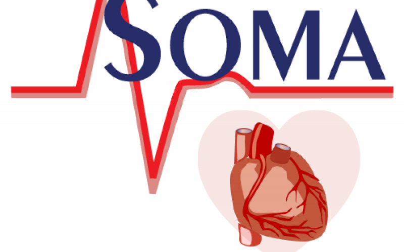 World Heart Health