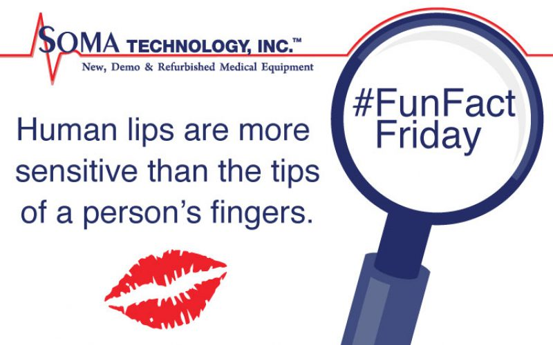 Human Lips are More Sensitive Than the Tips of Your Fingers.
