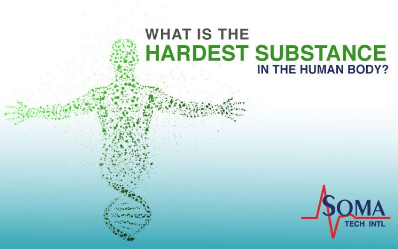 What is The Hardest Substance in The Human Body?