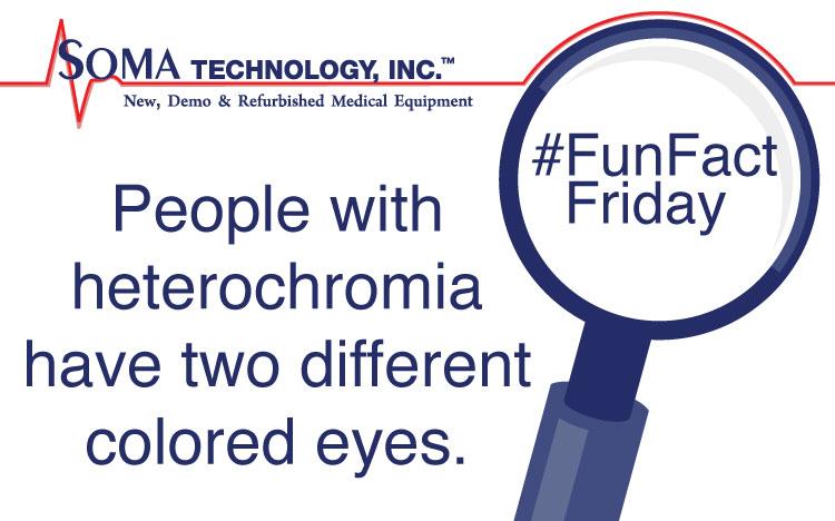 Heterochromia Fun Fact