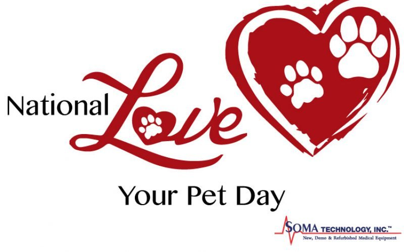 Love Your Pet Day: How Pets Play a Role in Our Lives