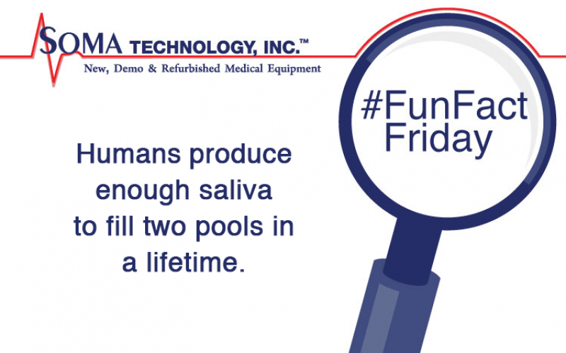 Humans Produce Enough Saliva to Fill Two Pools