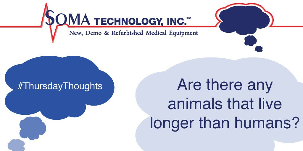 Animals Live Longer