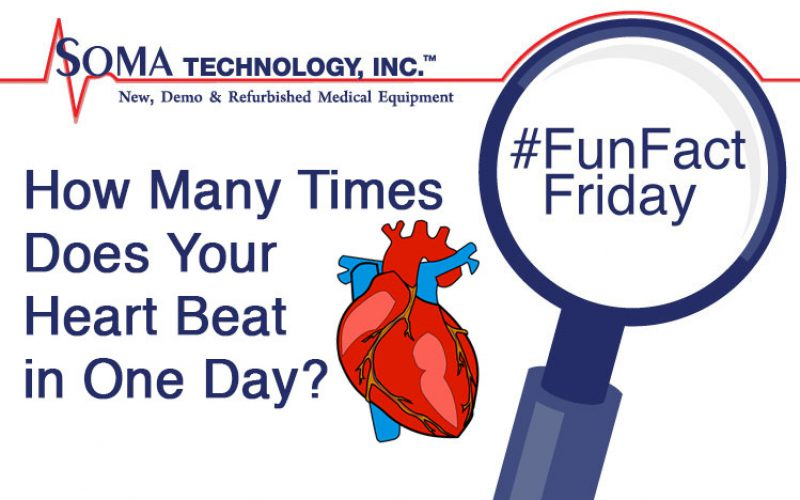 How Many Times Does Your Heart Beat in One Day?