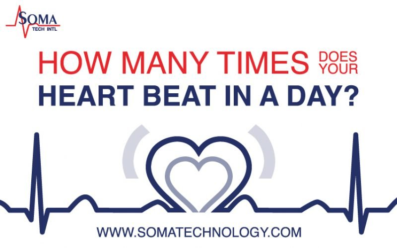 How Many Times Does Your Heart Beat in a Day?
