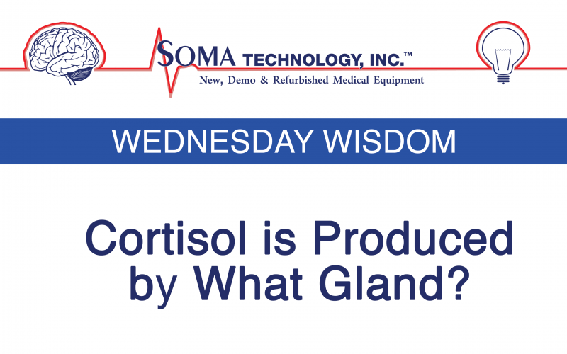 Wednesday Wisdom: Cortisol is Produced by What Gland?
