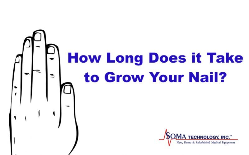 Thursday Thought: How Long Does It Take To Grow Your Nail?