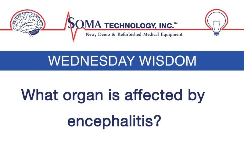 Wednesday Wisdom: What Organ is Affected by Encephalitis?