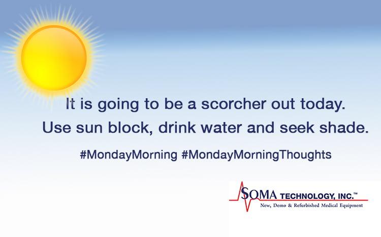 Monday Morning Sun