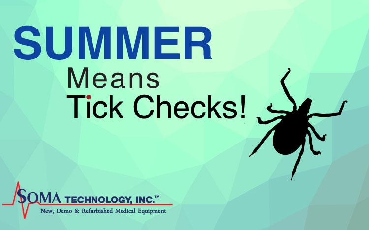summer ticks