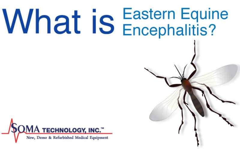 What is Eastern Equine Encephalitis?