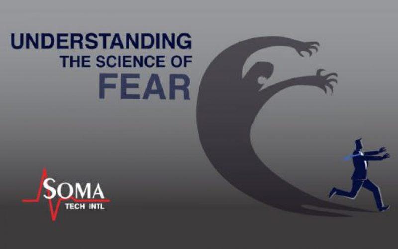 Understanding The Science Of Fear