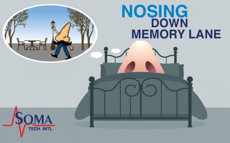 Nosing Down Memory Lane