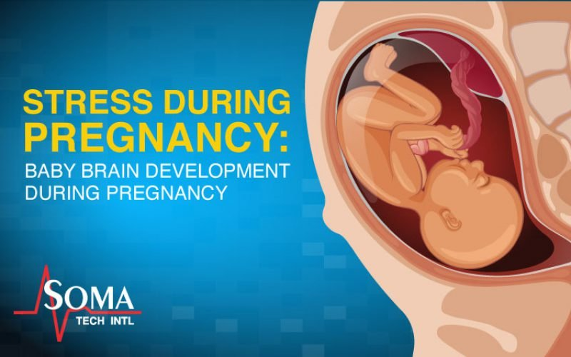 Stress During Pregnancy: Baby Brain Development During Pregnancy