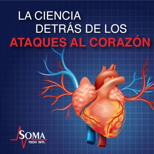 La Ciencia Detrás De Los Ataques Al Corazón